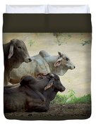 Brahman Cattle Duvet Cover by Peggy Collins