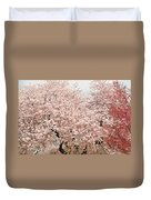Branch Brook Cherry Blossoms Iv Duvet Cover