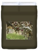 Branch Of An Apple Tree Duvet Cover by Juli Scalzi