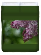 Branch With Spring Lilac Flowers Duvet Cover