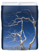 Branches Of Silver Duvet Cover by Steven Bateson