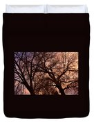 Branching Out At Sunset Duvet Cover