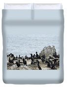 Brandt's Cormorant Colony At Point Lobos State Natural Reserve Duvet Cover