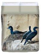 Brandts Cormorant Nesting On Cliff Duvet Cover