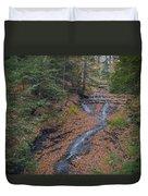 Bridal Vail Falls - Cvnp Duvet Cover
