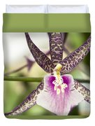 Bratonia Miltassia Charles M Fitch Izumi Orchid Hawaii  Duvet Cover