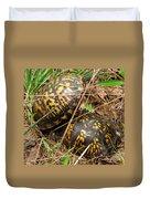 Breeding Box Turtles Duvet Cover