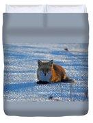 Brer Fox Duvet Cover