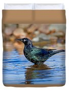 Brewers Blackbird In Water Duvet Cover