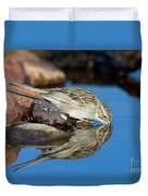 Brewers Sparrow At Waterhole Duvet Cover