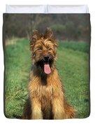 Briard Puppy Duvet Cover