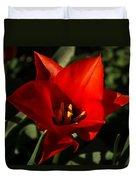 Brilliant Spring Sunshine In Red  Duvet Cover