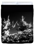 Bristlecone Twins In Infrared Duvet Cover