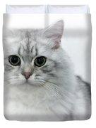 British Longhair Cat Time Goes By Duvet Cover by Melanie Viola