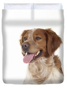 Brittany Dog, Close-up Of Head Duvet Cover