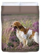 Brittany Dog, Standing In Heather, Side Duvet Cover