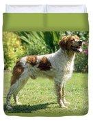Brittany Dog, Standing Side Duvet Cover