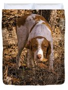 Brittany Spaniel Pixel's Pointed Woodcock Duvet Cover