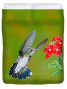 Broad-billed Hummingbird Duvet Cover