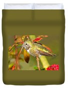 Broad Tailed Hummingbird Duvet Cover