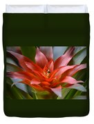 Bromeliad I Duvet Cover