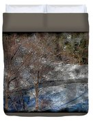 Brook And Bare Trees - Winter - Steel Engraving Duvet Cover