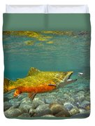 Brook Trout And Coachman Wet Fly Duvet Cover
