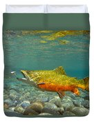 Brook Trout And Royal Coachman Duvet Cover