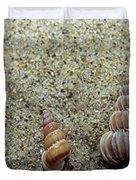 Brown-banded Wentletrap Duvet Cover