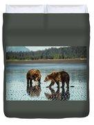 Brown Bear, Ursus Arctos, Walking Duvet Cover