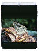 Brown Clipper Butterfly #3 Duvet Cover