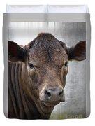 Brown Eyed Boy - Calf Portrait Duvet Cover