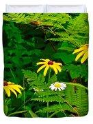Brown-eyed Susans Along Rivier Du Nord Trail In The Laurentians-quebec Duvet Cover