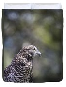 Brown Goshawk V2 Duvet Cover