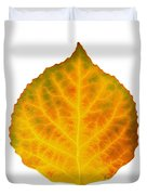 Brown Green Orange Red And Yellow Aspen Leaf 3 Duvet Cover