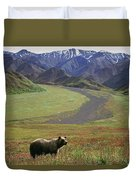 Brown Grizzly Bear In Denali National Duvet Cover