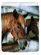 Brown Horse In Stall Duvet Cover