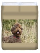Brown Labradoodle In Field Duvet Cover