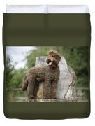 Brown Labradoodle Standing On Tree Stump Duvet Cover