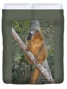 brown Maki Madagascar 1 Duvet Cover