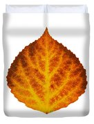 Brown Orange And Yellow Aspen Leaf 1 Duvet Cover