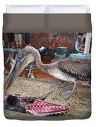 Brown Pelican At The Fish Market Duvet Cover