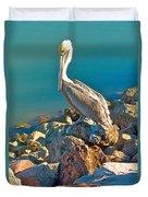Brown Pelican In San Carlos-sonora Duvet Cover