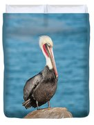 Brown Pelican Pelecanus Occidentalis Duvet Cover
