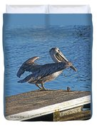 Brown Pelican Takes Flight Duvet Cover