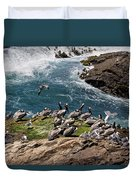 Brown Pelicans And Gulls On The Reef Duvet Cover