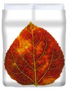 Brown Red And Yellow Aspen Leaf 1 Duvet Cover