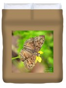 Brown Skipper Butterfly Square Duvet Cover