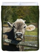 Brown Swiss Cow Duvet Cover