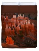 Bryce Canyon 17 Duvet Cover